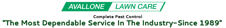 Avallone Lawn Care